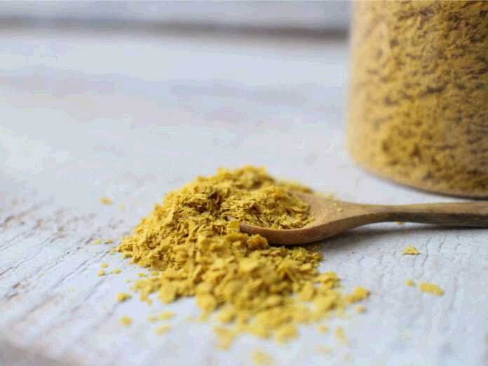 nutritional yeast and fungal infections