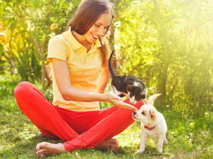 How do ringworm infections spread