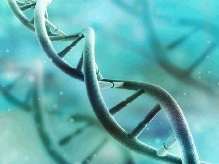 genes make you more prone to fungal infections