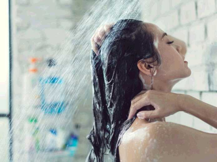 shampoo to fight scalp fungus