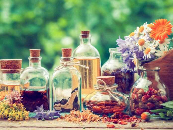 essential oils to treat fungal infections