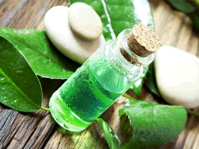Can tea tree oil help you fight fungal infections
