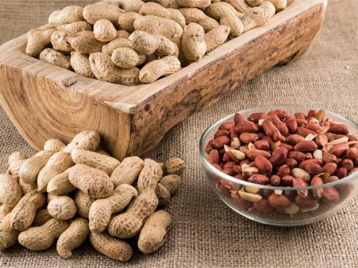 peanuts contain aflatoxins